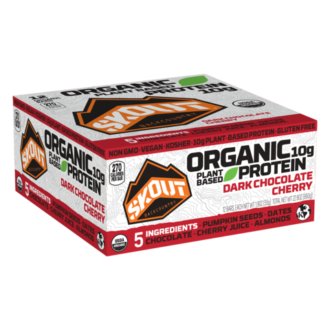 dark-chocolate-cherry-organic-protein-bar