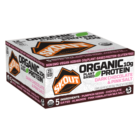 dark-chocolate-pink-salt-organic-protein-bar